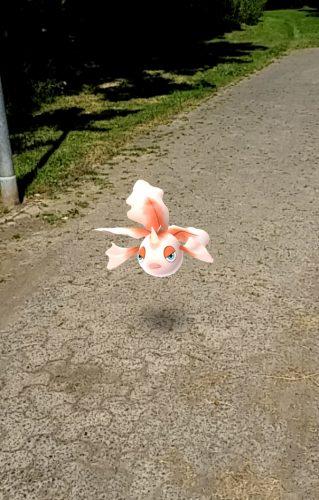 Schwebende Fische sind keine Seltenheit. Foto: Tulacek
