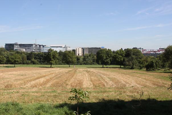 Die Firmen im Gewerbegebiet am Kronberger Hang sorgen weiter für einen Geldregen über Schwalbach. Und auch die Aussichten sind gut. Foto: Schlosser